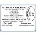 Etichete semilucioase AVICOLA, pui grill, 58x43 mm