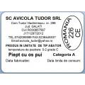 Etichete semilucioase AVICOLA, piept cu os, 58x43 mm