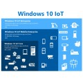 Microsoft Windows 10 IoT Enterprise, Entry, LTSB